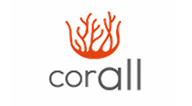Haze Shift - Corall