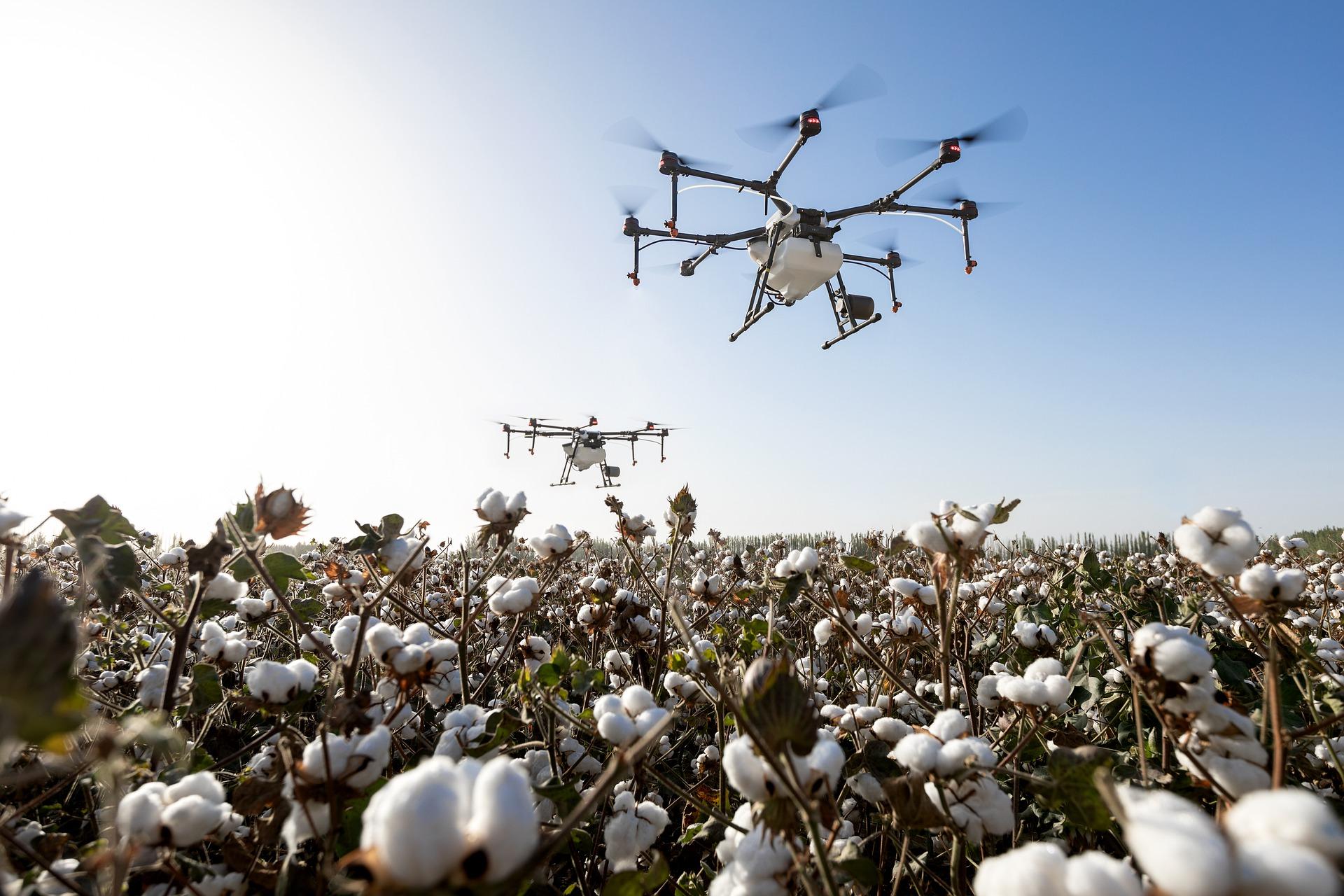 Agricultura 5.0: inovação aberta