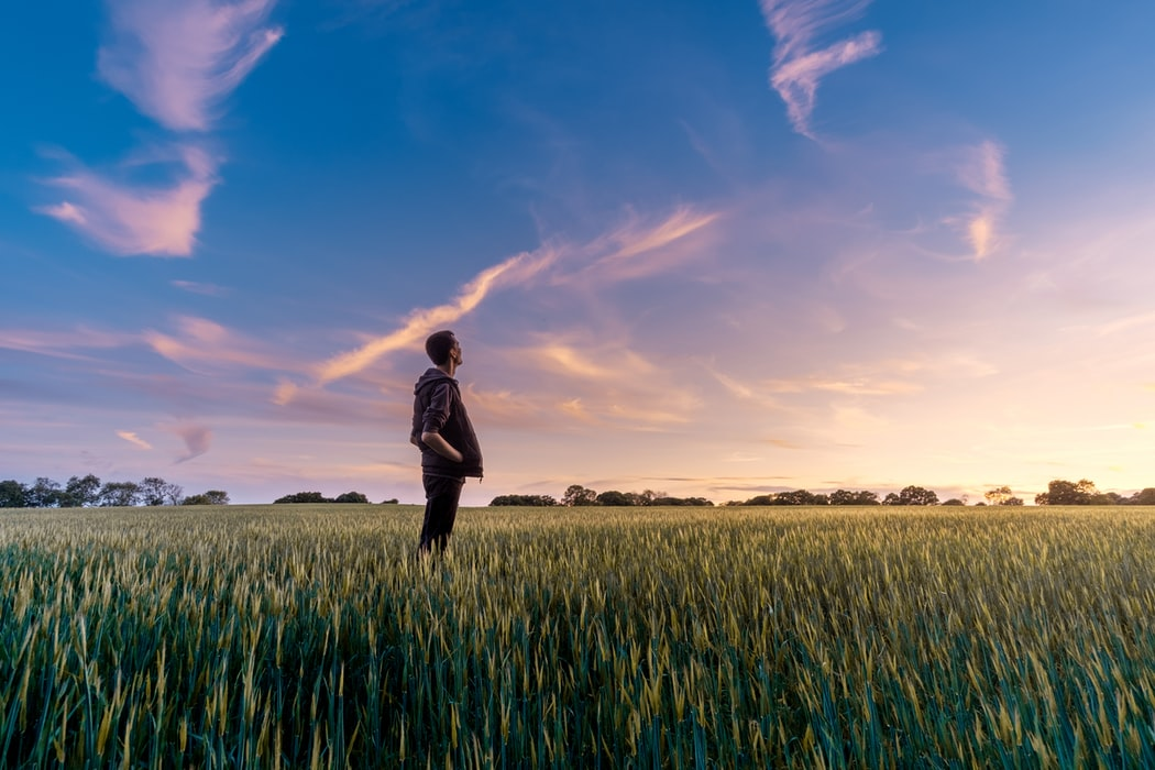 Cultura da inovação no agronegócio