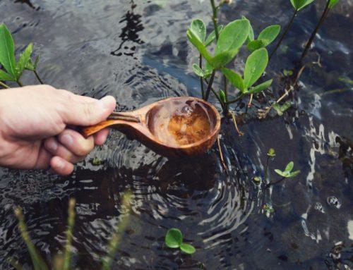 Empresas de qualquer ramo podem ser fontes de energia limpa e água potável. Duvida? Nós explicamos